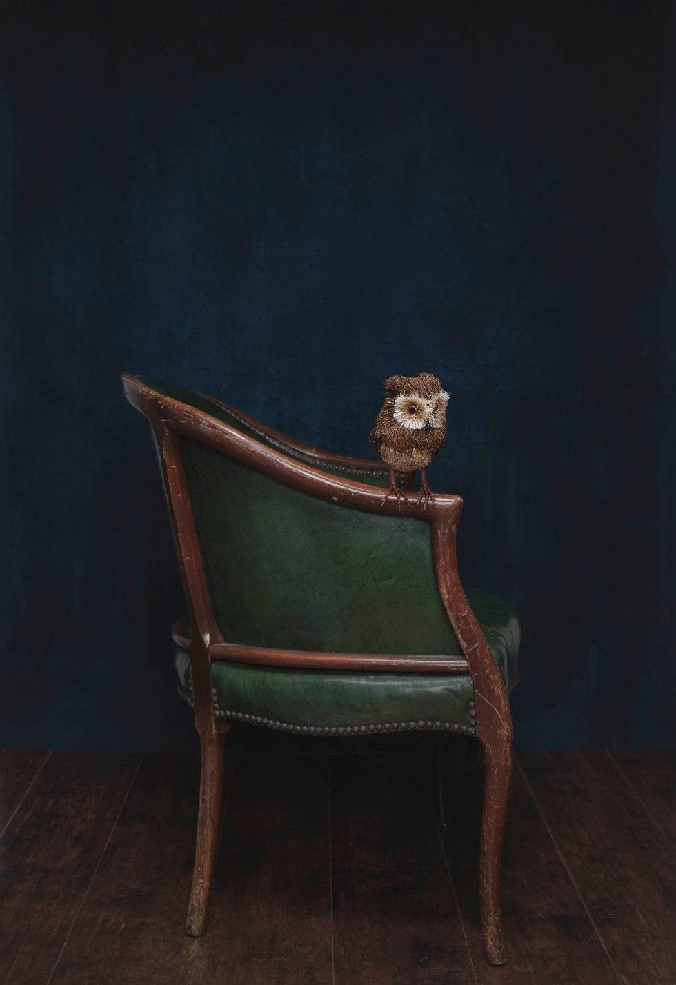 Owlonoldchair